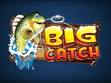 Big Catch на деньги