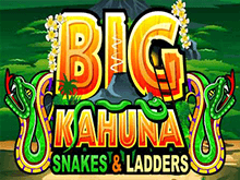 Big Kahuna Snakes And Ladders онлайн