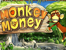 Monkey Money в виртуальном казино