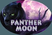 Азартный аппарат Panther Moon
